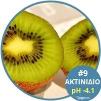 Αλκαλικές τροφές - Ακτινίδιο