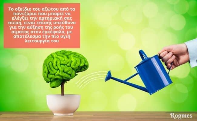 υγιής εγκέφαλος