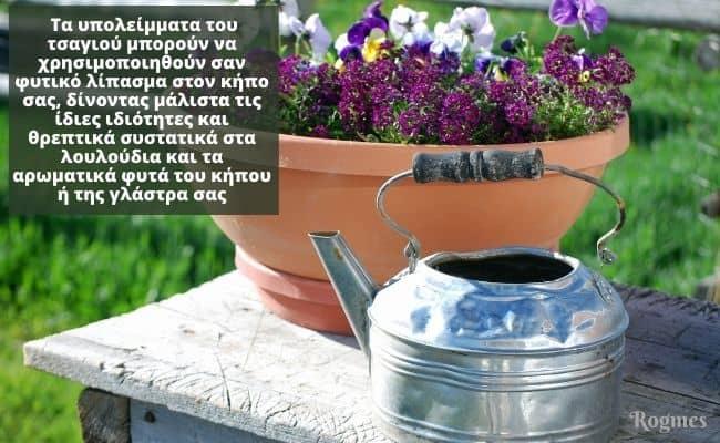 Τσάι στα λουλούδια