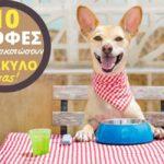 10 Επικίνδυνες Τροφές Που Μπορούν Να Σκοτώσουν Το Σκύλο Σας!